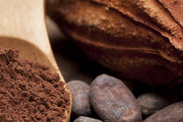 「チョコレート」は身体にいいのか続く議論:Is the chocolate good for a body?