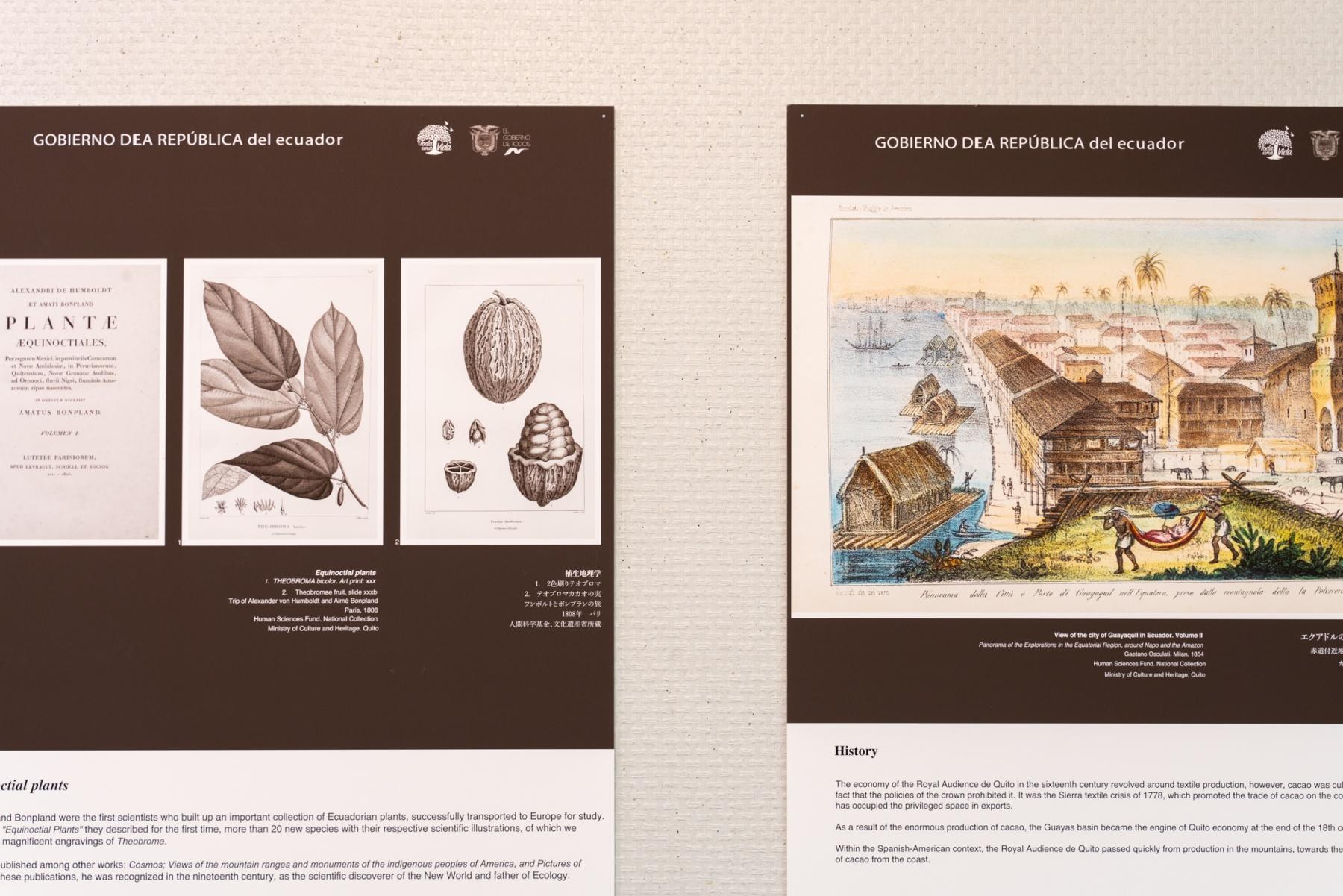 エクアドル大使館主催「ファインアロマカカオ展」レポート