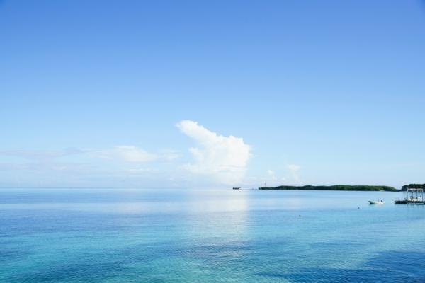 食のつながりや循環が、よく見える島、沖縄。